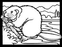 Beaver coloring sheet